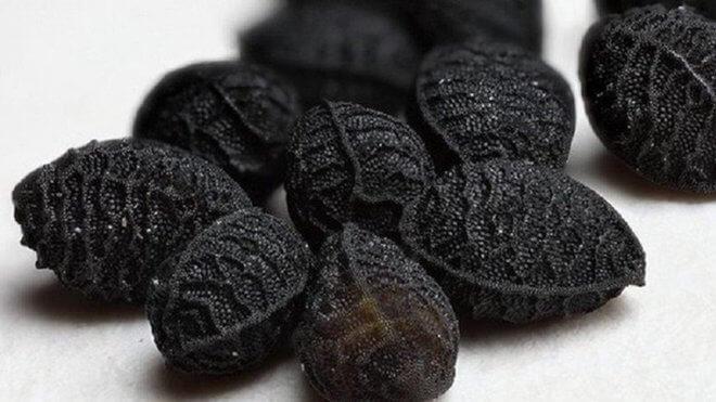 Sjemenke crnog kima