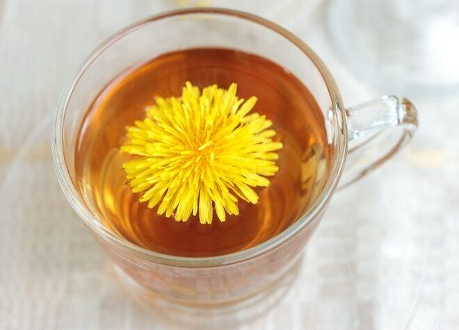 čaj od korijena maslačka