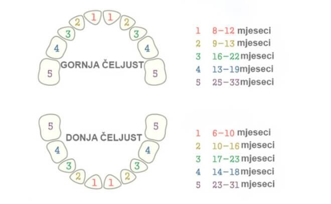 Mliječni-zubi-broj