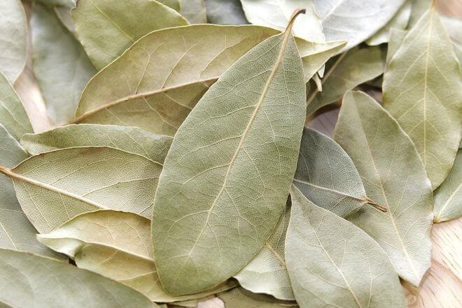 Sušeni lovorov list