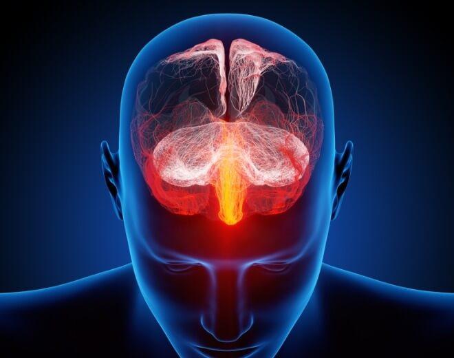 Središnji-živčani-sustav