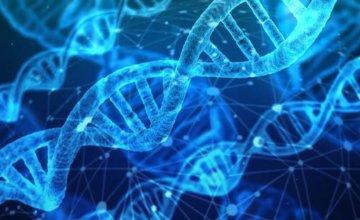 Hranom i meditacijom do duže DNK - dio 1.