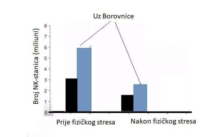 Broj NK-stanica uz borovnice