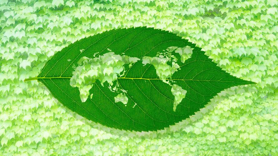ekoloski uzgoj