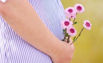 Hemoroidi u trudnoći