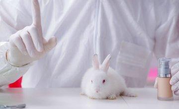 cruelty free kozmetika