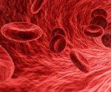 paraziti u krvi