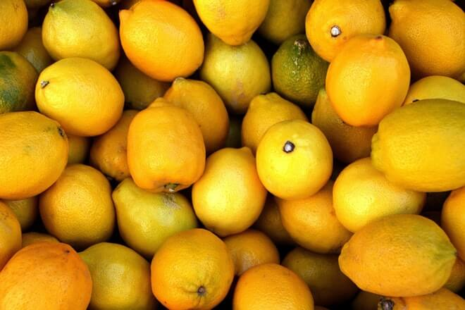 Candida i limun