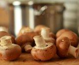 Gljive u borbi protiv prehlade