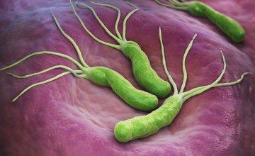 Bakterije u želucu