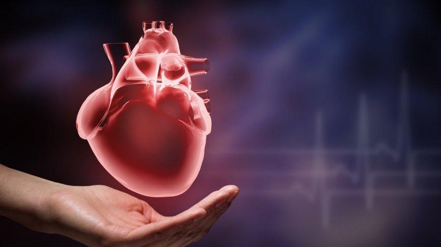 Kateterizacija srca