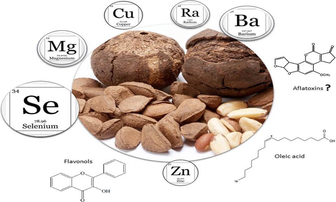 Zdravstvene prednosti brazilskih oraha