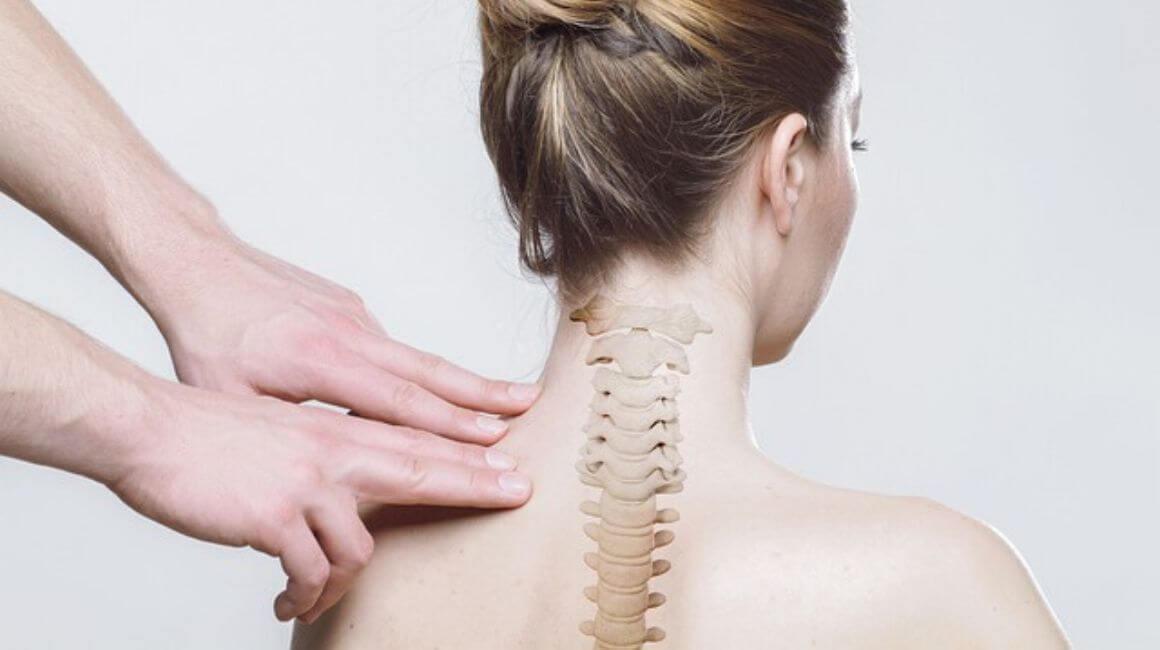 Bol u kralježnici