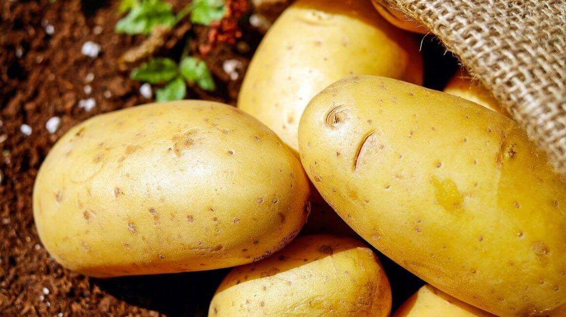 Krumpir dijeta