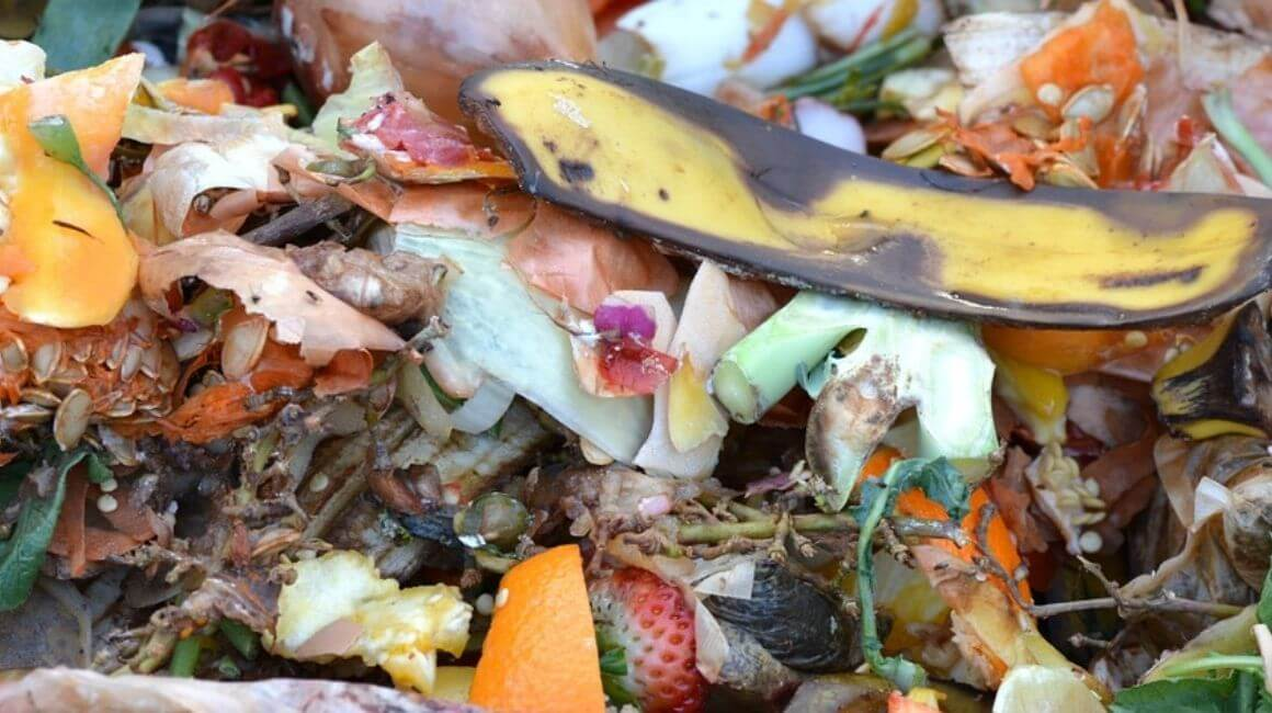 Samo kompost